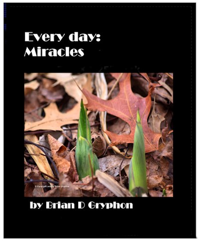 Every Day: Miracles