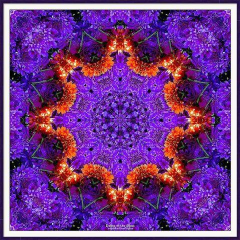 framed print of kaleidoscope image