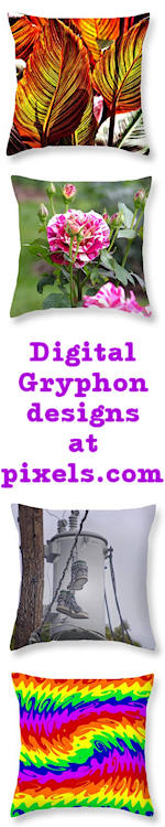 DG Shop at Pixels.com